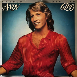 Andy Gibb ‎- Shadow Dancing (LP) (VG+/G++)